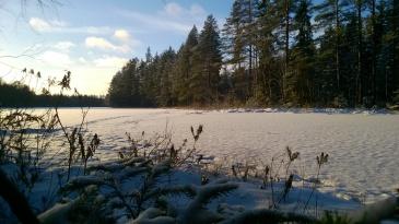 Kaulamoinen-järven rannalla